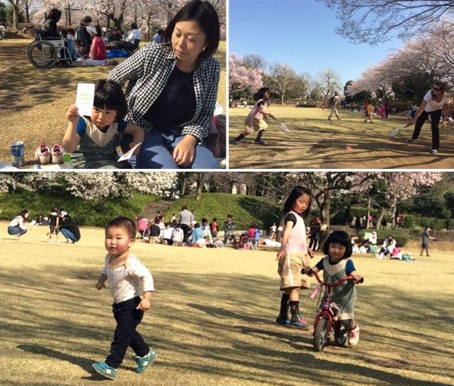 Hanami Fun