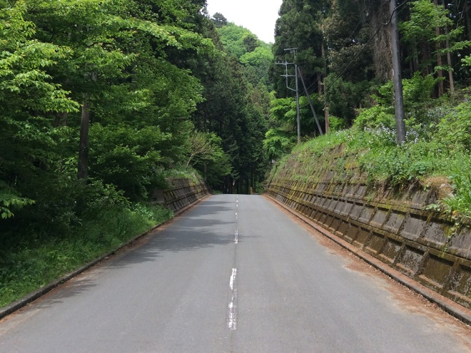 Walking up the road to the hiking trails leading to Koburi Pass