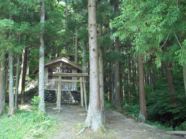 Rikyu Shrine, a small shrine in the woods along the road to the poppy fields. Shuttle services to the fields ended the weekend before our visit, so we got a nice 2.5 KM walk up the hill to see them.