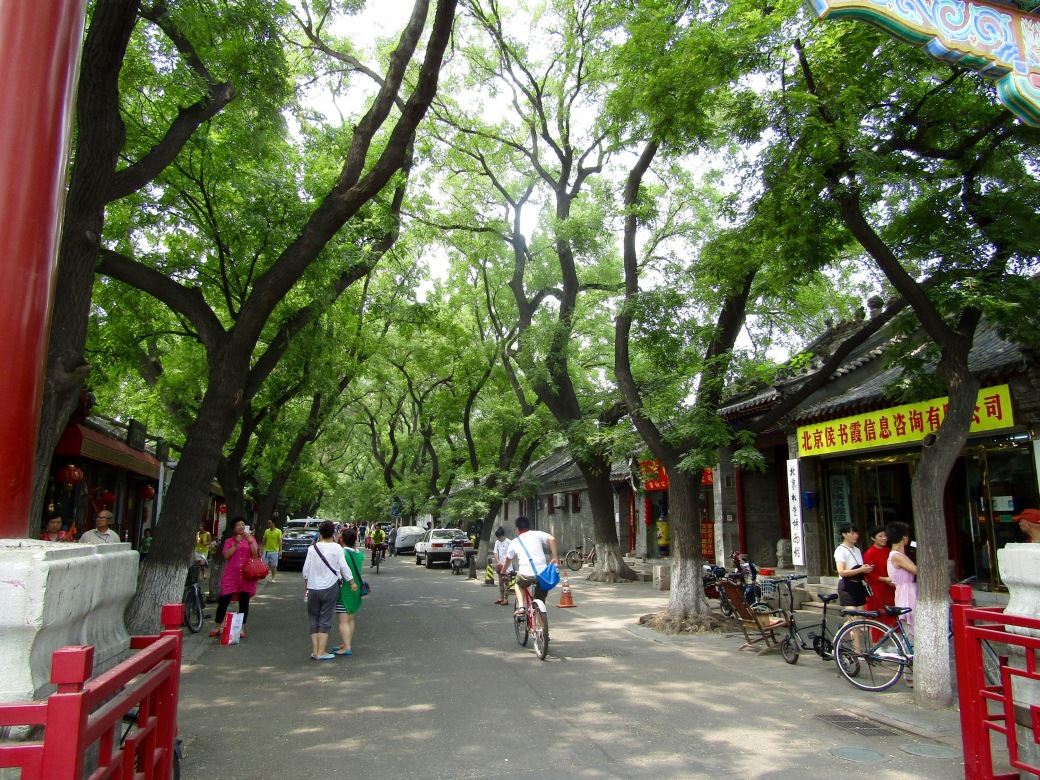 A tree-lined street leading to the Confucius Temple. We also found our second suprise craft brewpub in an adjacent hutong.