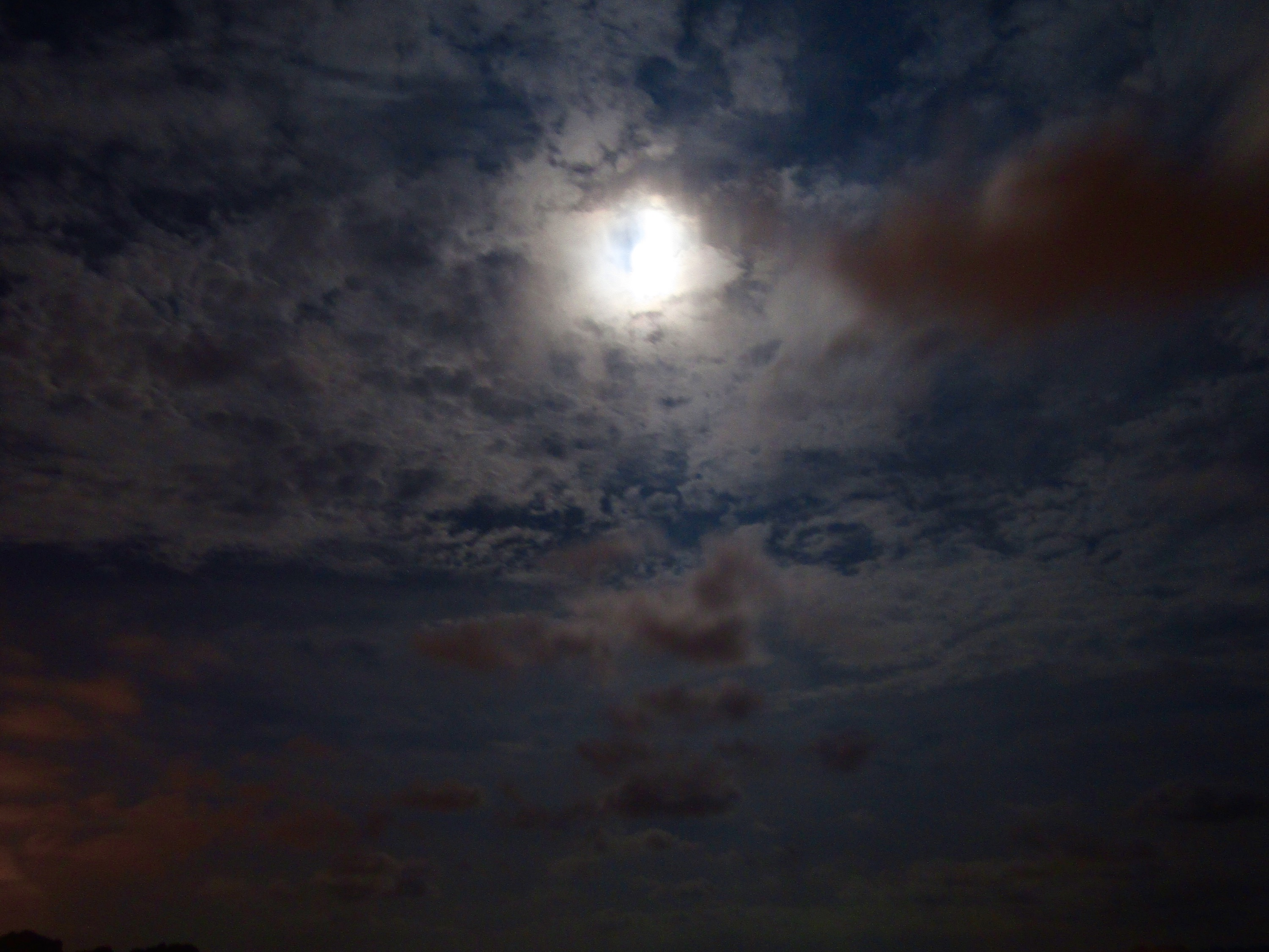 Fiddling with the nighttime settings on our new camera, I managed to capture the moon over the gulf on a cloudy evening.