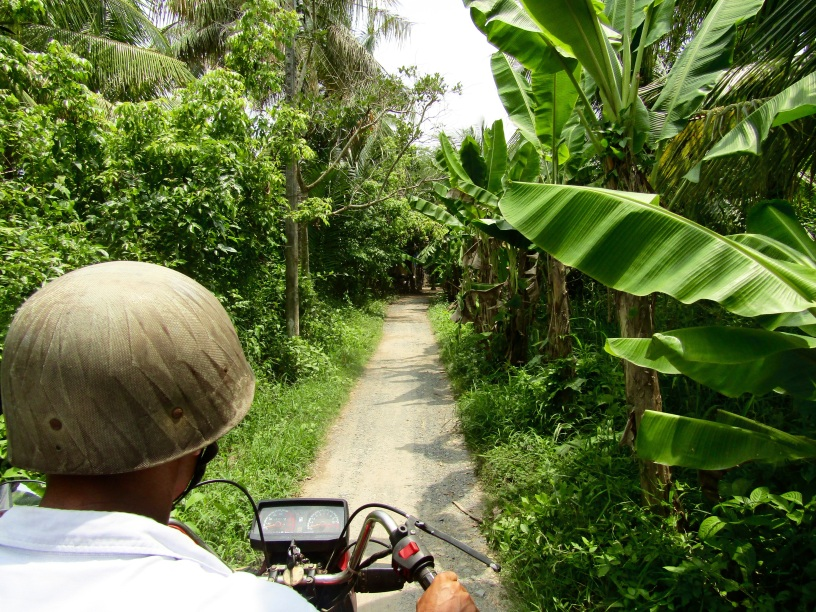 A motorbike ride through narrow trails on a tour of the Mekong Delta