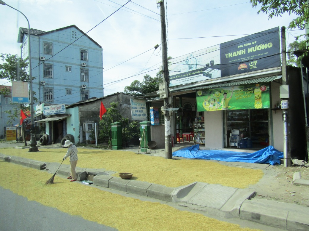 The bus route passed through several small towns, offering a glimpse of the daily workday. Several people were raking out rice on the sidewalks and even into the streets to separate it from the stalks. I've read that the rice stalks are placed in the streets to allow passing cars to act as a grain thresher, separating the rice from the stalks.