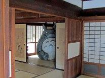 Totora peeking out of the back room of the Kurosuke House