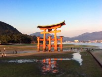 The Great Torii at low tide in the early morning