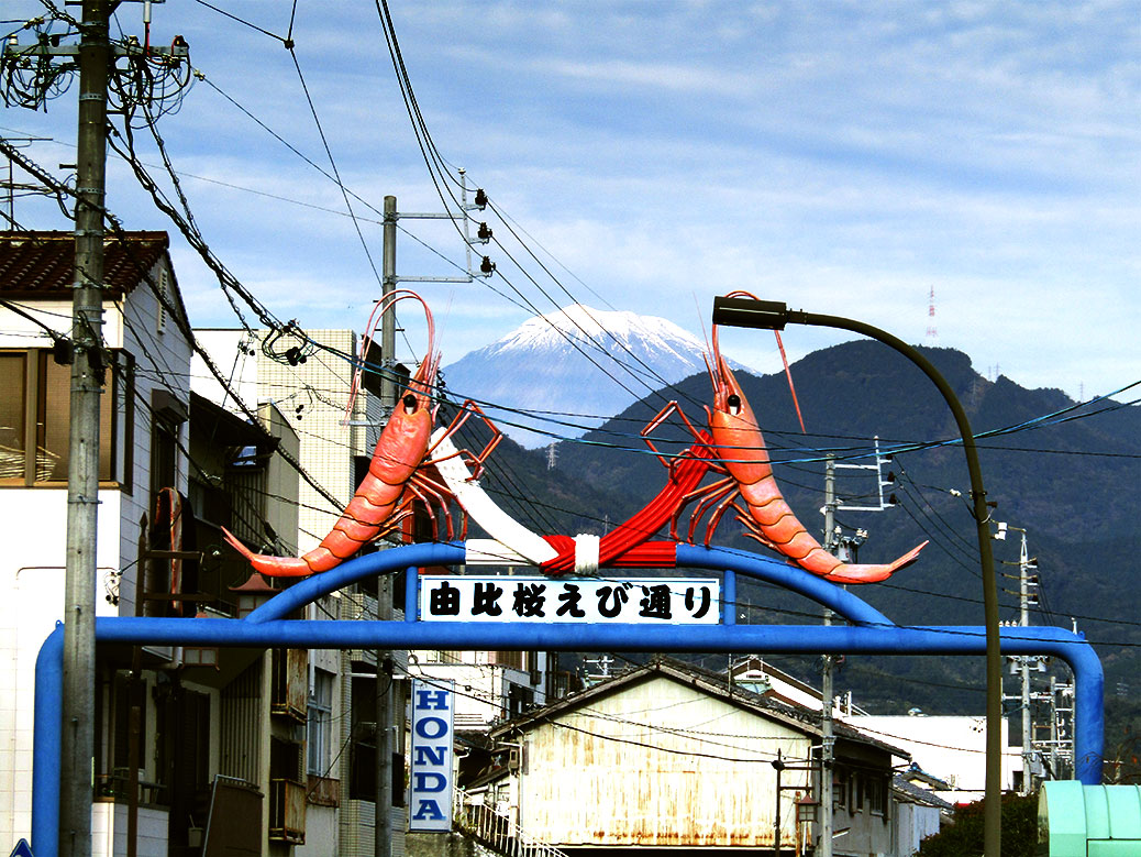 "A ""decorative"" gate in front of Yui Station, showing the sakura-ebi (cherry shrimp) that are famously found in Yui's part of Sugura Bay"
