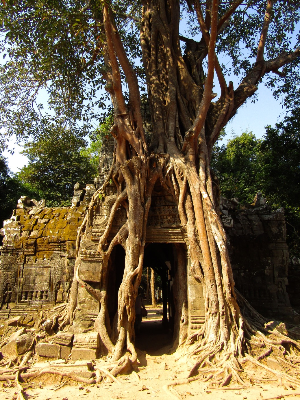 Ta Som, another 12th century temple built during the reign of King Jayavarman VII, is regarded as a mini Ta Prohm thanks to its Spung-wrapped east entrance.