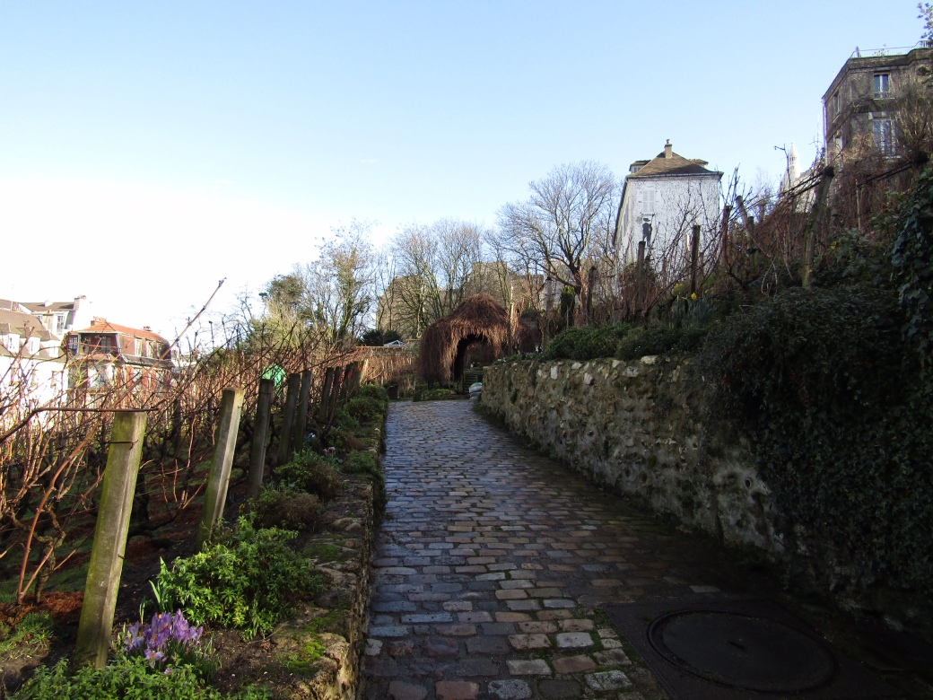 The neighborhood vineyards at Clos Montmartre were planted to keep urban sprawl away from the homes. It produces just a few hundred bottles of wine, most sold at an annual festival.