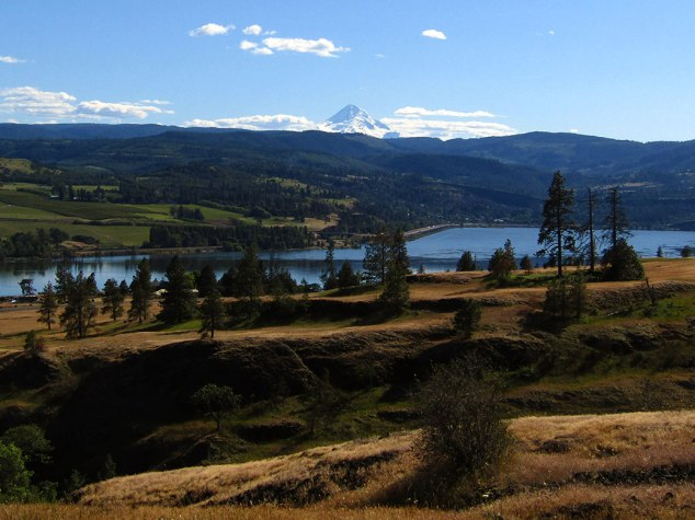 View of Mt. Hood and the Columbia River from the top of the Catherine Creek Arch Loop trail.