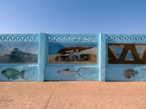 Coastal murals advertising the fish that can be seen in the reef.