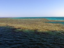First snorkeling and dive site off Tiran Island.