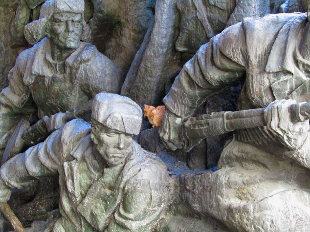 A cat resting in the alley of statues.